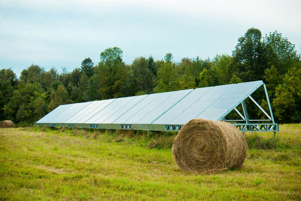 Solar Energy Use In Agriculture And Horticulture